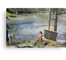 There was obvious confusion when Terry suggested to Sandy that she test the water. Metal Print