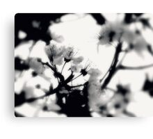 tranquility...two~ Canvas Print