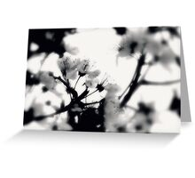 tranquility...two~ Greeting Card