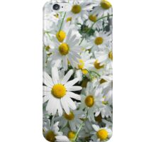 White daisy flowers iPhone Case/Skin