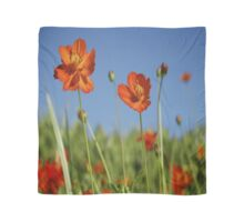 Red Cosmos Flower Scarf