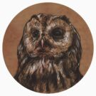 Brown Owl by laurxy