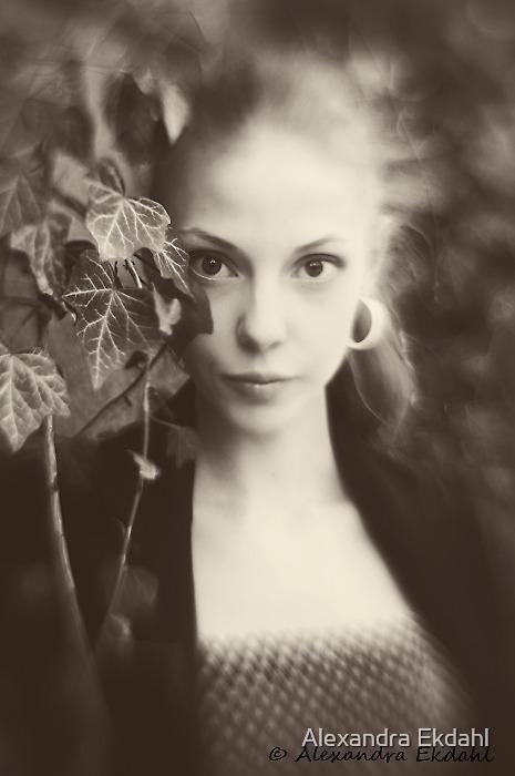 BoW by Alexandra Ekdahl