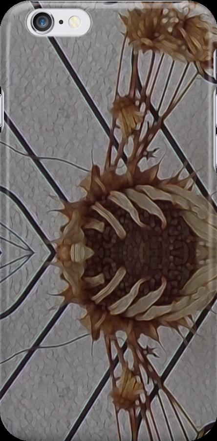 Dead Wall Flower by edend