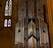 Hanging Organ by phil decocco