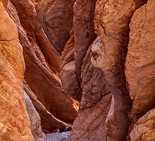 Narrow Passage by James Marvin Phelps