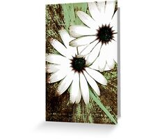 grungy daisys Greeting Card