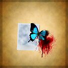 Free like a butterfly by TomMclean
