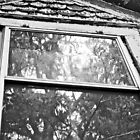 Old Window 2 by lindsycarranza