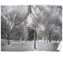Snow-covered Path in a Scenic Park Poster