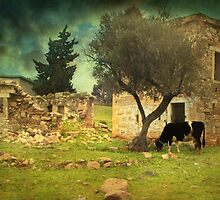 Once upon a time in Phokaia  by Taylan Soyturk