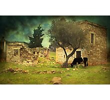 Once upon a time in Phokaia  Photographic Print