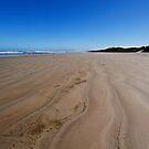 Ocean Beach by Keith Midson