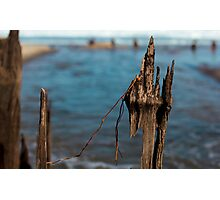 Jersey Shore Photographic Print