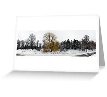 Weeping Willow on a snowy day Greeting Card