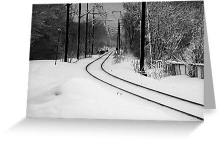 February Snowstorm on Tracks by Joanne  Bradley