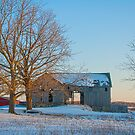 Barn with the Golden Tree by gharris
