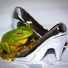 Frog with Silver High Heel Shoes by Donna Rondeau