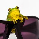 Frog on Sunglasses by Donna Rondeau