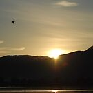 Sunrise with Pelican by unstoppable