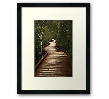 Walking Through The Wetlands Framed Print