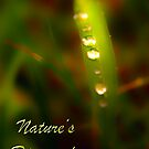 Nature's Diamonds surreal by Elisabeth Dubois