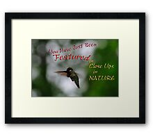 Close Ups in Nature - Featured Banner Challenge  Framed Print