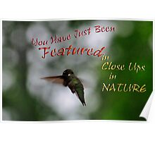 Close Ups in Nature - Featured Banner Challenge  Poster