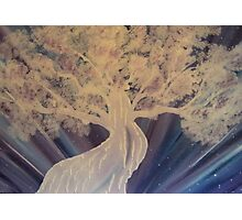 'Albino Tree' Photographic Print
