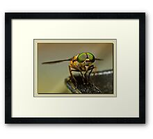 I see you 0001 Framed Print