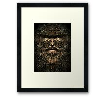 Old Man of the Woods Framed Print