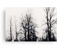 bleakness~ Canvas Print