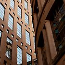 Vancouver Public Library by Rae Tucker