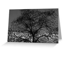 il grande albero Greeting Card
