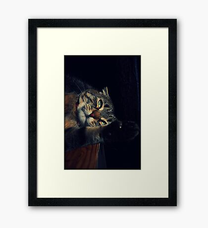 Wildcat Impression Framed Print
