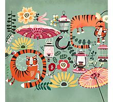 Tiger garden Photographic Print