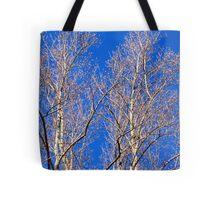 """""""Vibrancy"""" Tote Bag"""