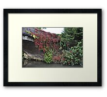 Landscape Red Ivy Framed Print