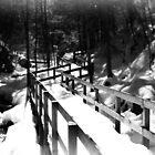 Winter Walkway by Richard Ahne