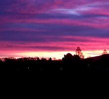 Sunset over Inverleith Park Edinburgh  by Sara-Jane  Keeley