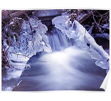 icy tranquil moment Poster