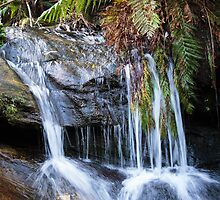 Leura Cascades Waterfall in the Blue Mountains by Verotte