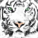 White Tiger by John Ryan