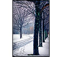 Winter wonderland walk Photographic Print
