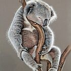 Koala Sleep by Nicole Zeug