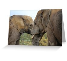 Elephant Cuddles Greeting Card