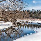 The creek by PhotosByHealy