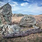 all you need is rocks by John Conway