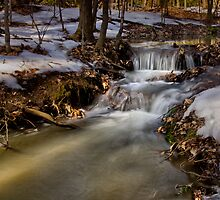 Spring At the Creek by Kathy Weaver