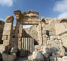 Jordan's Best Kept Secret - Jerash by Ren Provo